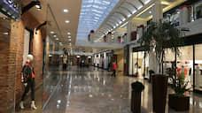 Управляющая ТЦ «Галерея»  раскритиковала льготу по налогу на имущество