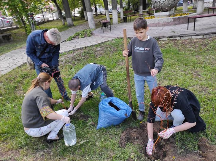 Пермские предприниматели 26 мая 2021 года высадили ивы в сквере купцов Грибушиных