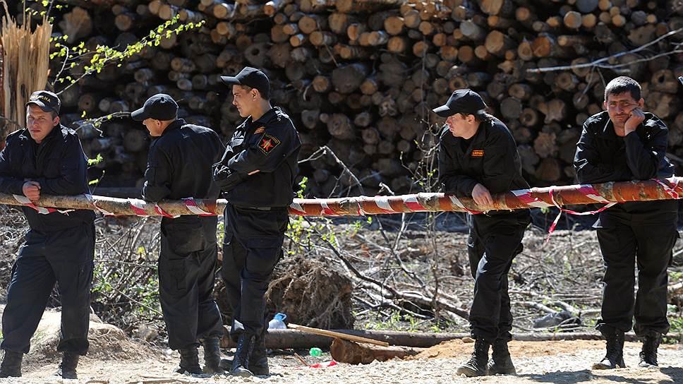Генпрокуратура РФ подкорректирует лесозаготовительные планы ООО «Привус»