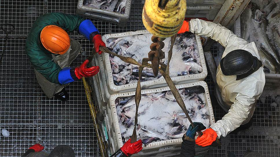 Северный бассейн может остаться без гавани / Над Мурманским рыбным портом нависла угроза остановки