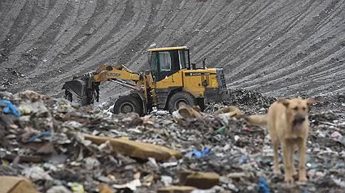 Каменку расчистили под греков // Смольный пожертвовал двумя мусороперерабатывающими заводами стоимостью 5,5млрд рублей
