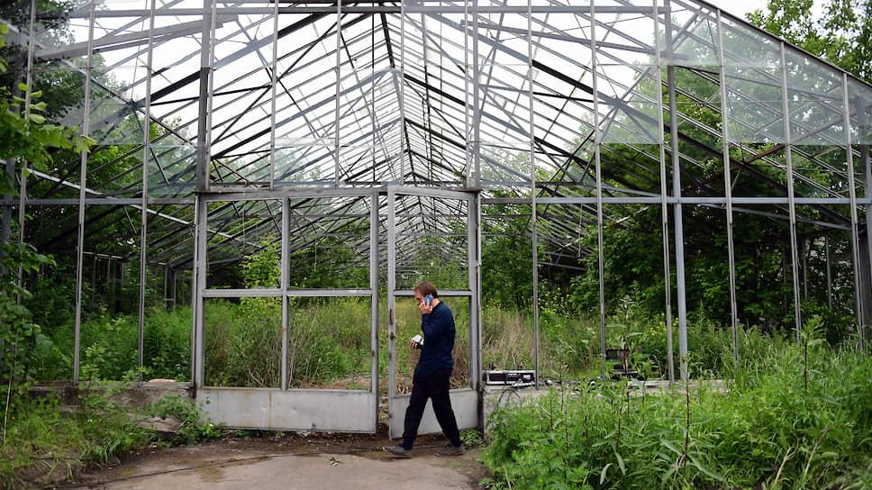«Газпром» остался без конкурентов / на участие в конкурсе по реконструкции оранжерей Таврического сада