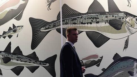 Попутали берега  / Крупный переработчик рыбы выносит производство за пределы города