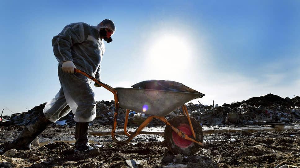«Ситиматик» подбирается к мусору / Российский оператор может заняться отходами Ленобласти