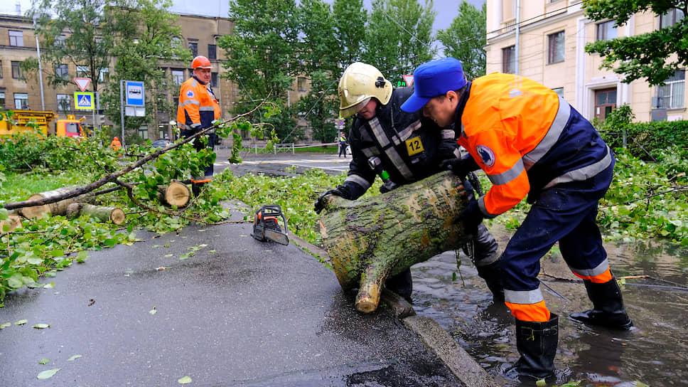 Сотрудники аварийной службы и пожарной службы МЧС России во время расчистки проезжей части от упавших деревьев