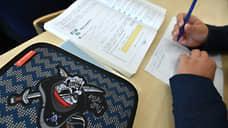 В Петербурге на дистанционном обучении находятся 22 школьных класса