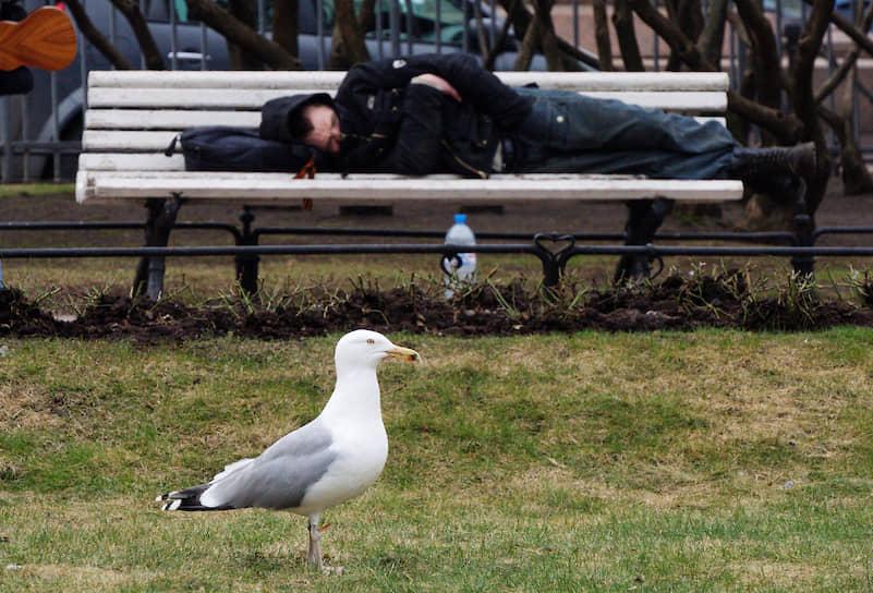 Мужчина спит на лавке в сквере