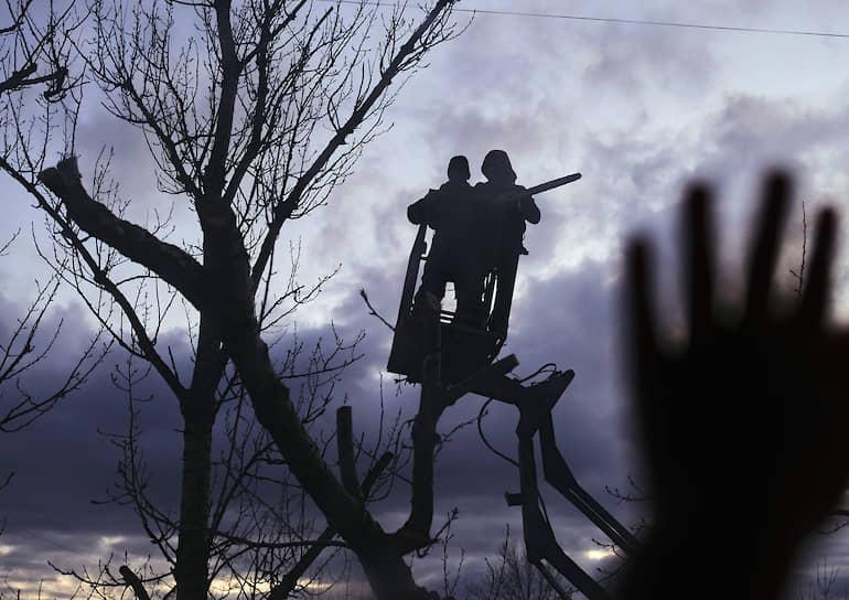 Силуэты сотрудников коммунальных служб во время сезонной обрезки деревьев