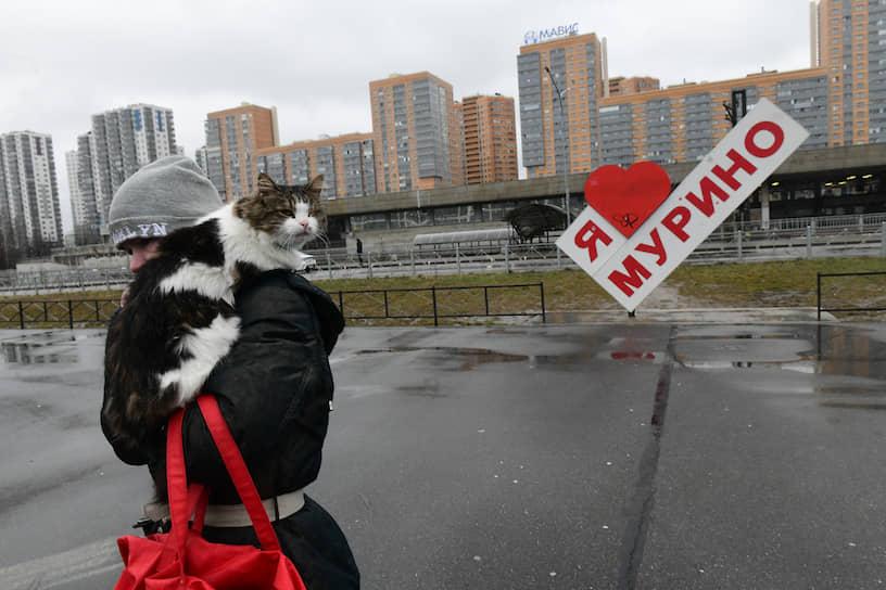 "Женщина с котом на плече на фоне надписи ""Я люблю Мурино"""