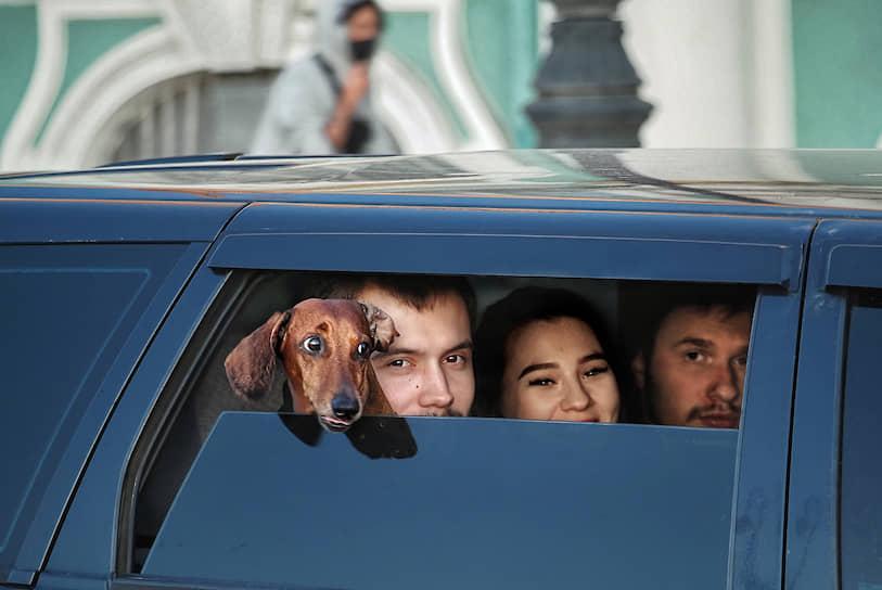 Пассажиры в салоне автомобиля с собакой