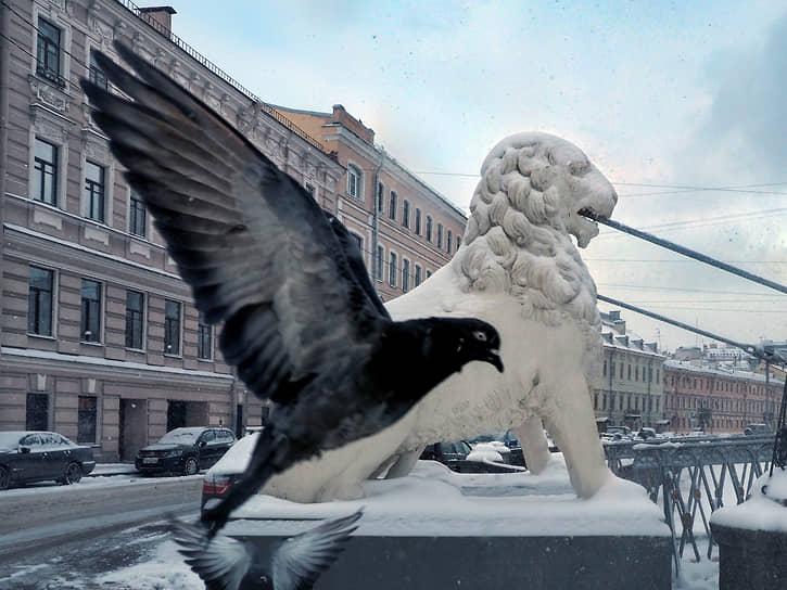 """""""Львиный мостик"""" через канал Грибоедова и взлетающий голубь"""