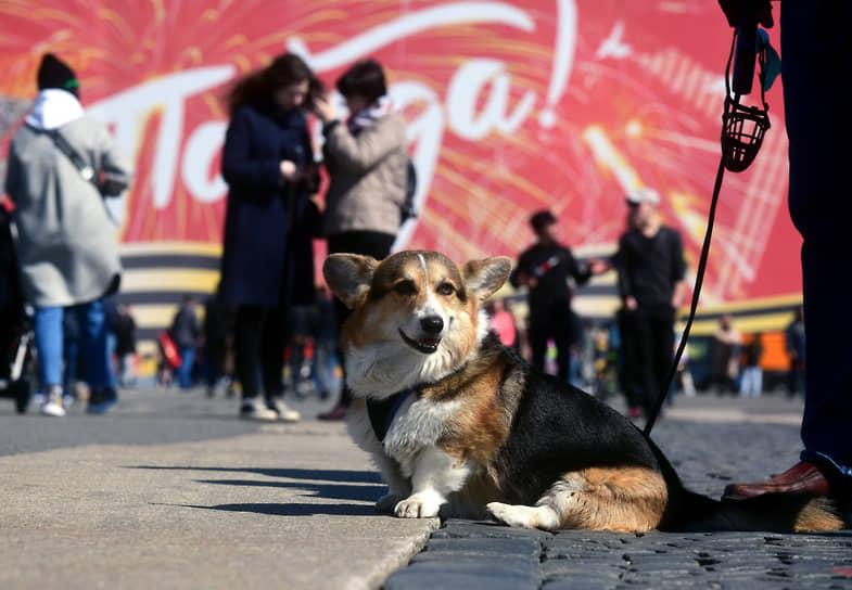 На Дворцовой площади после Парада Победы