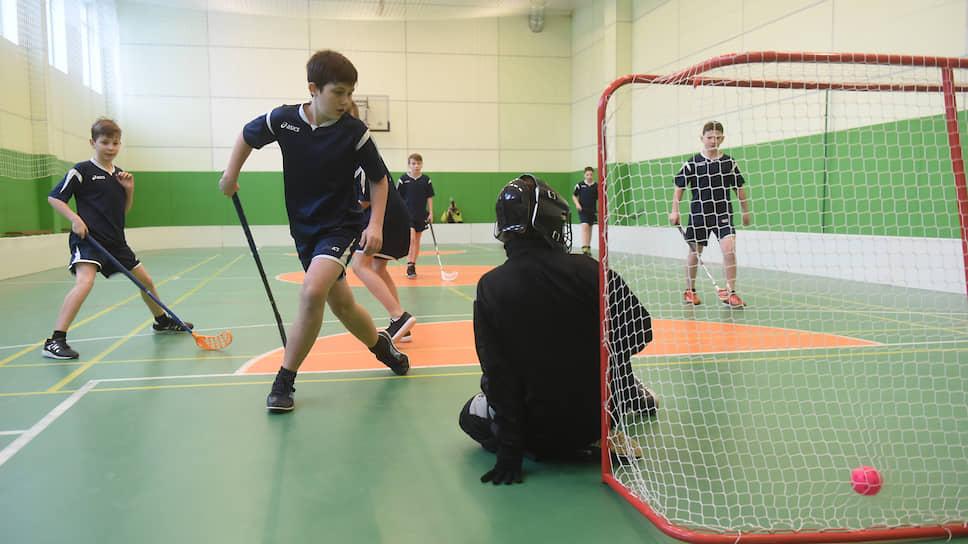 В настоящий момент детско-юношеский спорт в России становится все более коммерциализирован