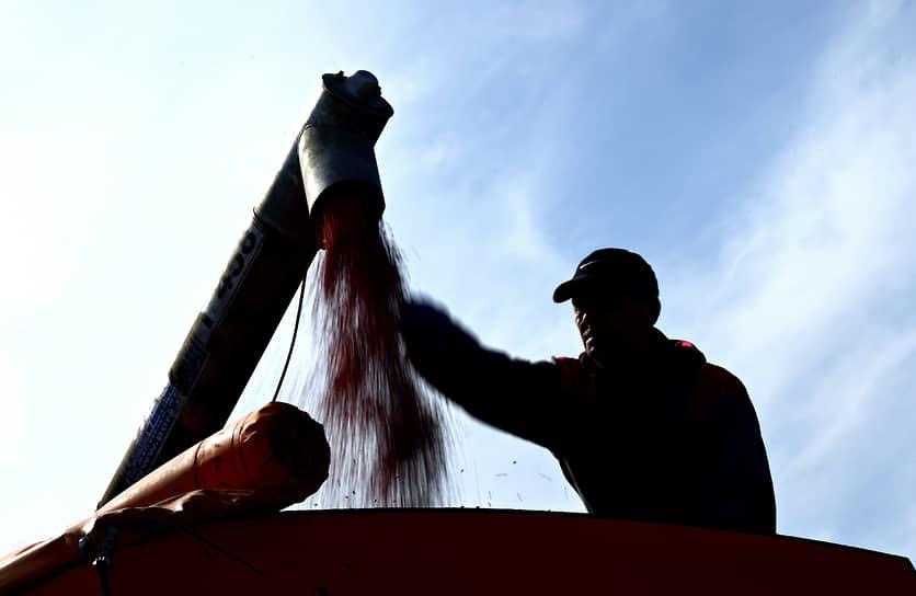 При правильном регулировании отрасли и экспортных ограничений Россия может еще больше нарастить экспорт и закрепиться в качестве основного поставщика зерновых на мировом рынке, прежде всего пшеницы