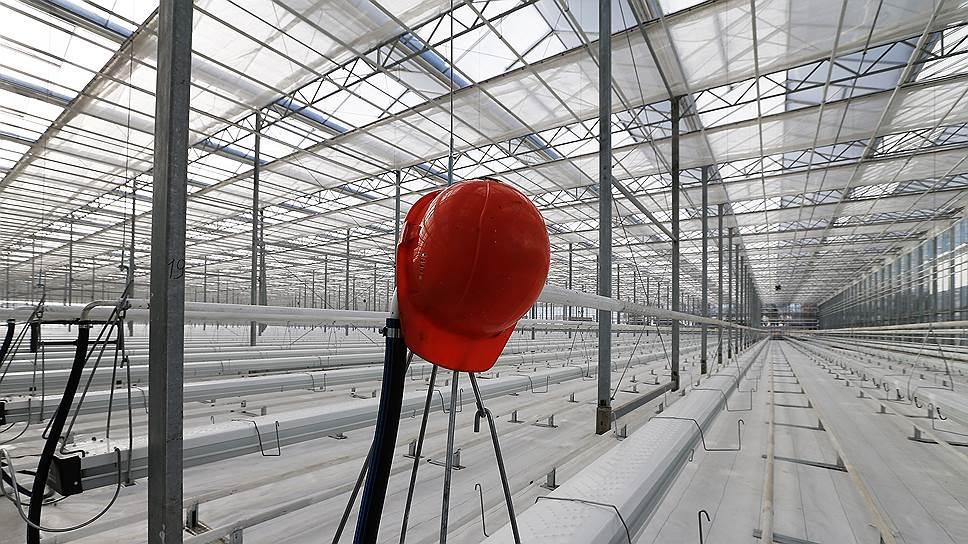 Тепличная заморозка / На Дону приостановлено строительство еще двух овощеводческих комплексов
