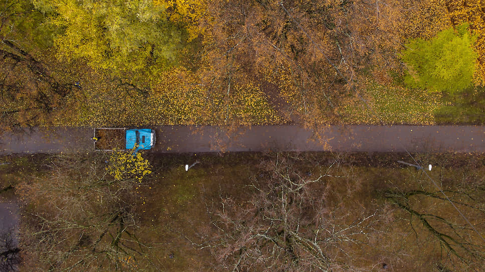 Инвестора вернули на лесную дорогу / ПДК «Апшеронск» не согласовали отчет о завершении крупного проекта