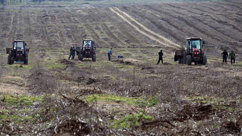 Приходская пашня осталась за храмом  / «Агрокомплекс» проиграл судебный спор за сельхозугодия в Староминском районе