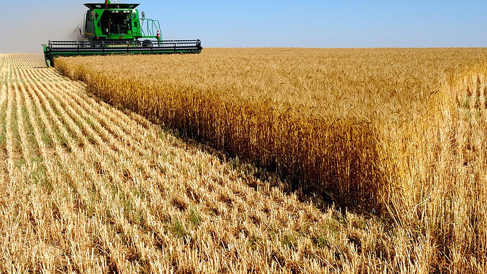 Возрастающий мировой спрос на сельхозпродукцию повышает роль аграрных регионов в мировой экономике и позитивно сказывается на юге России.