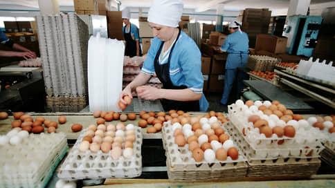 Долги Тольяттинской птицефабрики спросят с руководителя  / Бывшему гендиректору предъявили иск о субсидиарной ответственности
