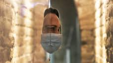 В Самарской области за 24 часа  выявили 453 случая заболевания COVID-19