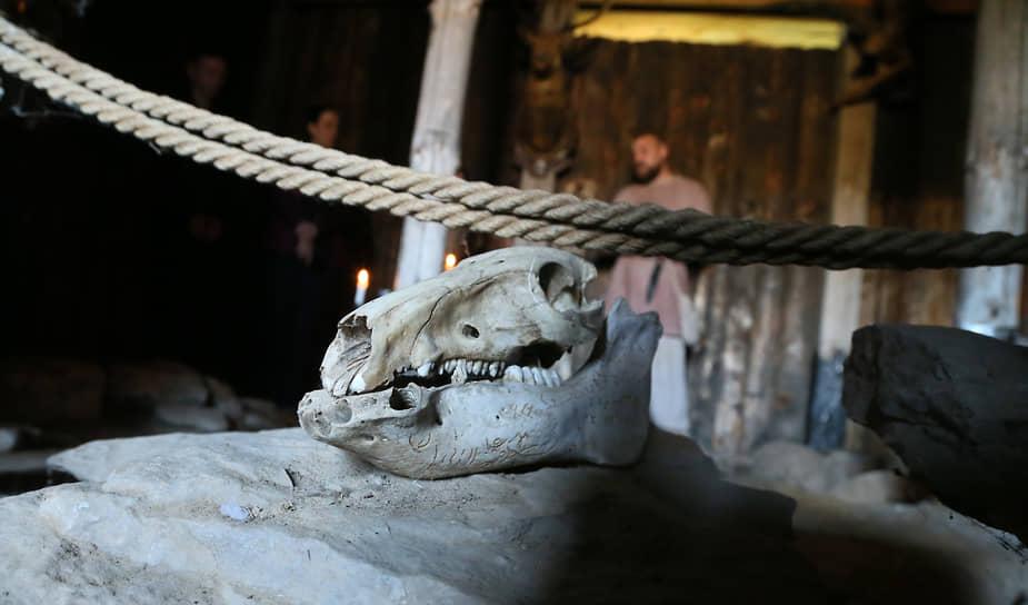 Разные артефакты позволяют лучше представить, что происходило много веков назад.