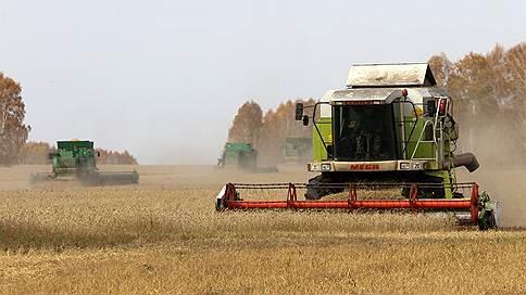 Зерно взошло напик  / агропром