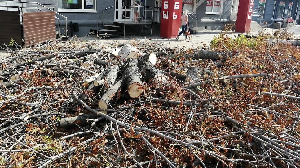 Саратовские общественники недовольны вырубкой деревьев повсему городу