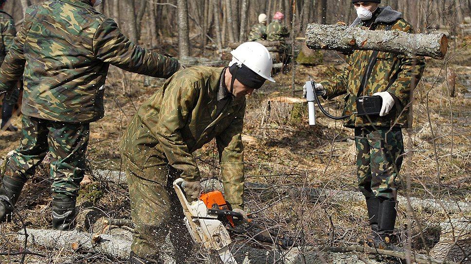 Липовое дело / В уничтожении деревьев нашли состав преступления