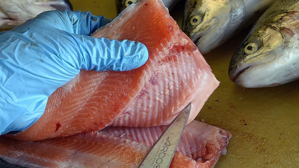 Планы по переработке рыбы в Орле до сих пор фигурирут в уголовных делах