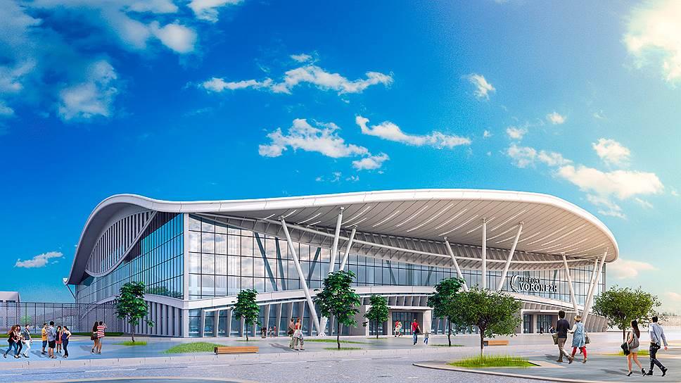 Проект воронежского аэропорта «Небесная арена»