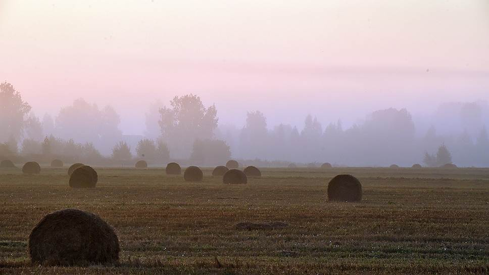 Почему льготных кредитов не хватает крестьянским хозяйствам и фермерам