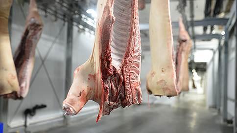 В иркутском мясе не нашли след Воронежа  / АЧС в регион могли завезти через Санкт-Петербург из Европы или с Украины