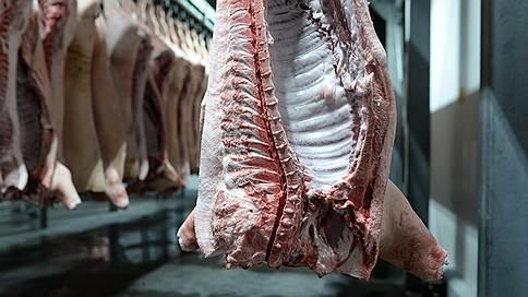 На Орловщине вкладываются в риски  / Знаменский СГЦ расширяет свиноводческое производство за 7 млрд рублей