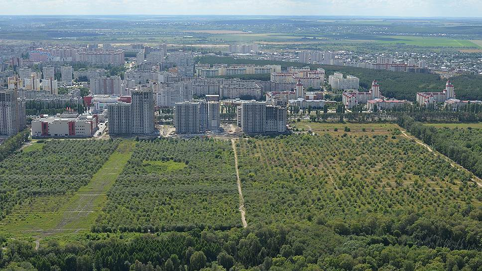Сколько стоит гектар земли возле яблоневых садов в Воронеже