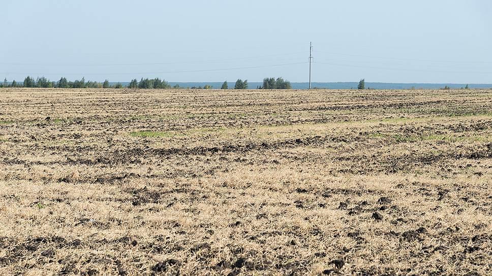 «Логус-Агро» остался без пшеницы / Совладельцы воронежской компании продали две трети активов Александру Князеву