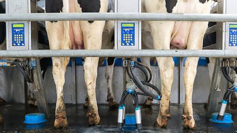 «Неварь» добавляет в зерно молоко  / Курская компания планирует построить ферму за 2,5 млрд рублей