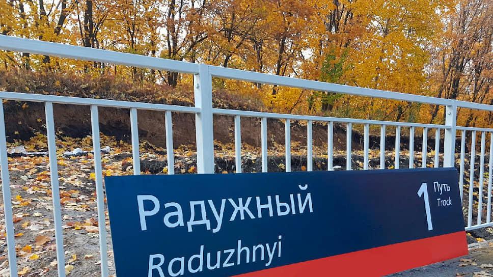 В мэрию Тамбова пришли за дубами / Полиция ищет виновных в вырубке деревьев во время строительства станции ЮВЖД