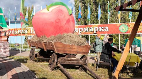 Попытке хищения нехватает имущества  / Уголовное дело погибшего вице-губернатора Тамбовщины оставили без состава