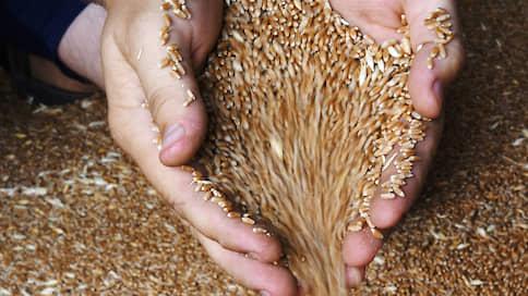 Кредиты исчезли с зерном  / Россельхозбанк пытается вернуть деньги и залоги, оказавшиеся у Орловской хлебной базы №36
