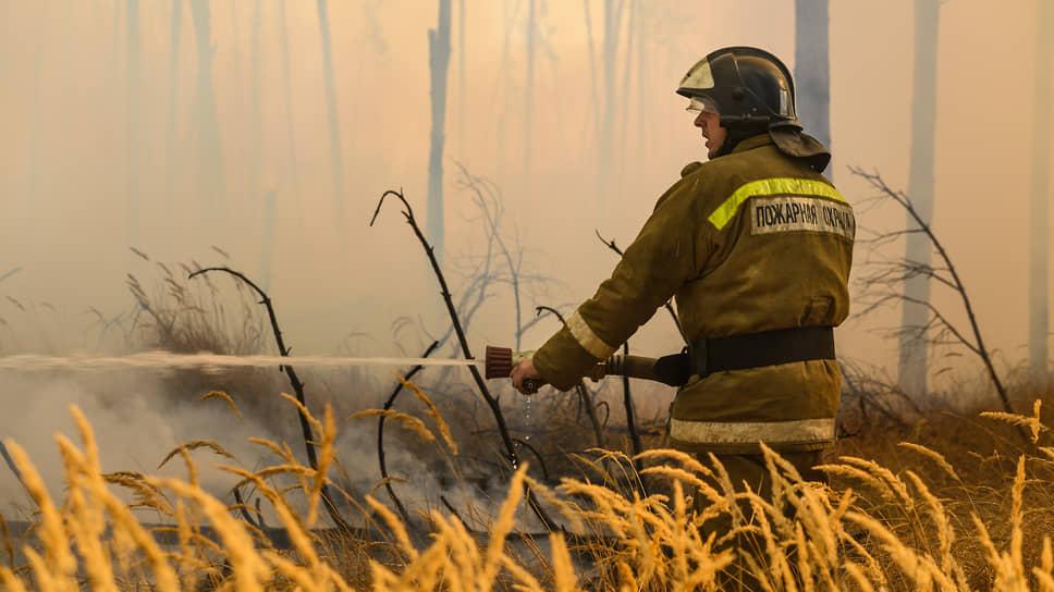 Огонь прошел по верхам / Крупные ландшафтные пожары под Воронежем затронули интересы строителей