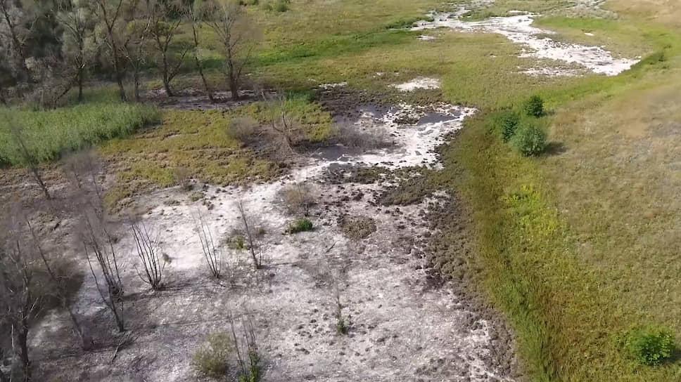 Трубе в лесу ищут хозяина / Под Борисоглебском Воронежской области определяют источник сбросов в реку Хопер
