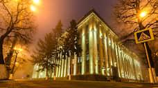 На Рождественском вечере в Воронеже собрали более 80 млн рублей