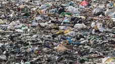 Воронежский мусорный полигон оштрафован на 572 тысячи рублей за экологические нарушения
