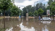 Воронежский Центральный парк снова затопило после дождя