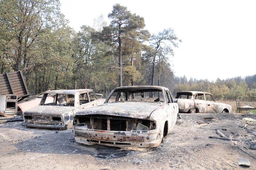 В те же дни вокруг Воронежа произошло еще несколько крупных пожаров. Всего на территории области было уничтожено более 3 тыс. га леса