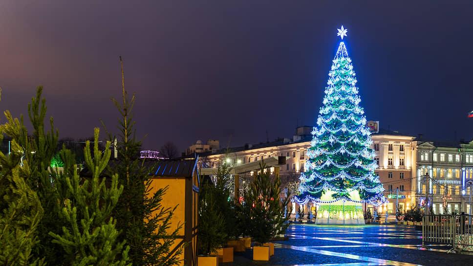 Стоимость главной новогодней ели Воронежа – 1,791 млн рублей