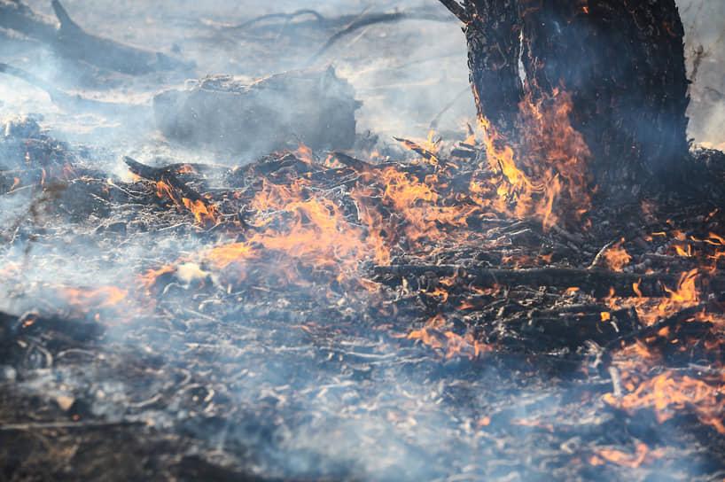 Ночью к ликвидации пожара в Новоподклетном присоединились около ста сотрудников Тульского спасательного центра МЧС России, срочно переброшенные в Воронеж