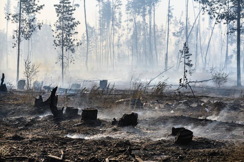 О полной ликвидации пожара в Новоподклетном на 25 га в МЧС сообщили в 8:30 понедельника