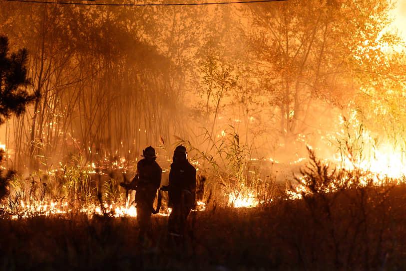 От загорания первого дерева слева от трассы Воронеж–Тамбов до прибытия пожарных автомобилей прошло не больше минуты: пламя сбили, и пожар остался низовым