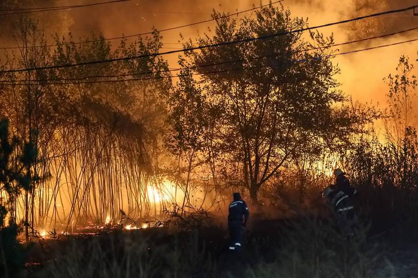 Пожарным удалось предотвратить повреждение местной линии электропередач, остановив огонь в считанных метрах от нее